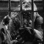 "Image for the Film programme ""Mighty Joe Young"""