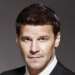 Image for David Boreanaz