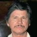Image for Charles Bronson