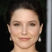 Image for Sophia Bush