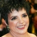 Image for Liza Minnelli