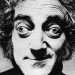 Image for Marty Feldman
