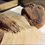 "Image for the Scientific Documentary programme ""Mummy Forensics"""