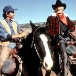 "Image for the Film programme ""City Slickers"""