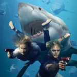 "Image for the Film programme ""Shark Swarm"""