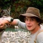 "Image for the Film programme ""White Fang"""