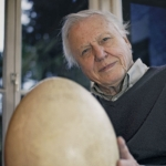 "Image for the Nature programme ""Attenborough and the Giant Egg"""