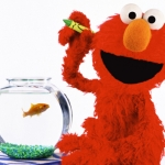 "Image for the Childrens programme ""Elmo's World"""