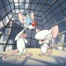 Image for Pinky and the Brain