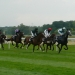 Image for Racing from Epsom