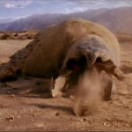 "Image for the Film programme ""Tremors"""