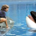 "Image for the Film programme ""Free Willy"""
