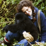 "Image for the Film programme ""Gorillas in the Mist"""