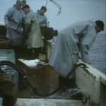 "Image for the Documentary programme ""Sea Fever"""