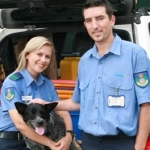 "Image for the Documentary programme ""RSPCA Animal Rescue"""