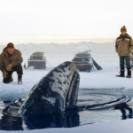 "Image for the Film programme ""Big Miracle"""