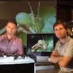 "Image for the Nature programme ""Insect Dissection: How Insects Work"""