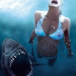 "Image for the Film programme ""Shark Night"""