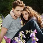 "Image for the Film programme ""The Twilight Saga: Breaking Dawn - Part 2"""