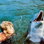 "Image for the Film programme ""Flipper"""