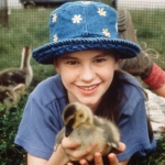 "Image for the Film programme ""Fly Away Home"""