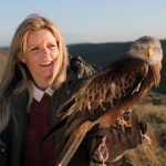 "Image for the Nature programme ""Britain's Big Wildlife Revival"""