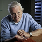 "Image for the Nature programme ""David Attenborough's Rise of Animals: Triumph of the Vertebrates"""