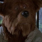 "Image for the Film programme ""The Country Bears"""