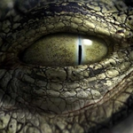 "Image for the Film programme ""Robocroc"""