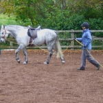 "Image for the Documentary programme ""Top Marks Intelligent Horsemanship"""