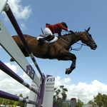 "Image for the Sport programme ""FEI World Cup Jumping"""