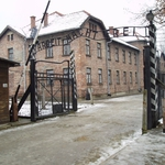 "Image for the History Documentary programme ""Auschwitz: Journey Into Hell"""