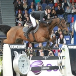 "Image for the Sport programme ""FEI Europeans 2013"""