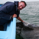 "Image for the Nature programme ""Whale Adventure with Nigel Marven"""