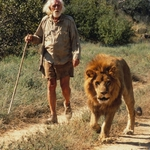 "Image for the Film programme ""To Walk with Lions"""