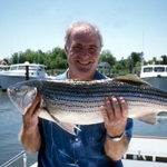 "Image for the Cookery programme ""Rick Stein's Seafood Odyssey"""