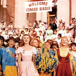 "Image for the Film programme ""Bye Bye Birdie"""
