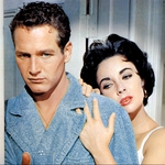 "Image for the Film programme ""Cat on a Hot Tin Roof"""