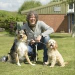 "Image for the Documentary programme ""The Dog Rescuers with Alan Davies"""