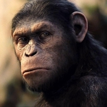 "Image for the Film programme ""Rise of the Planet of the Apes"""