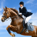 "Image for the Sport programme ""Equestrian"""