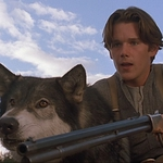 "Image for the Film programme ""Disney's White Fang"""