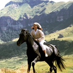 "Image for the Film programme ""The Young Black Stallion"""