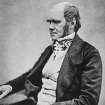 "Image for the History Documentary programme ""Darwin: The Voyage That Shook the World"""