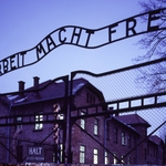 "Image for the History Documentary programme ""Auschwitz: The Nazis and The Final Solution"""
