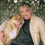 "Image for the Documentary programme ""Cesar to the Rescue"""