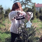 "Image for the Film programme ""A Christmas Tree Miracle"""