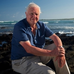 "Image for the Nature programme ""Galapagos 3D with David Attenborough"""