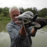 "Image for the Documentary programme ""River Monsters: Untold Stories"""