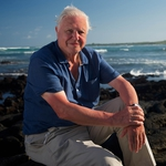"Image for the Nature programme ""David Attenborough's Galapagos"""